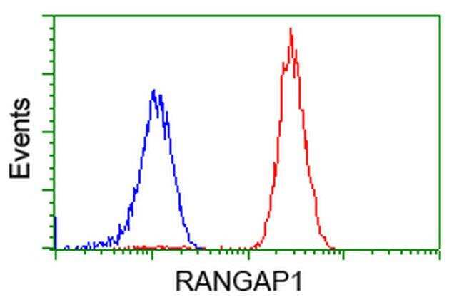 RANGAP1 Mouse anti-Canine, Human, Rat, Clone: OTI1B4, liquid, TrueMAB