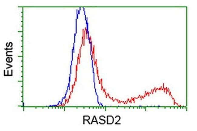 RASD2 Mouse anti-Human, Rat, Clone: OTI1A12, liquid, TrueMAB  100 µL;