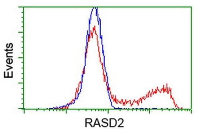 RASD2 Mouse anti-Human, Clone: OTI2G8, liquid, TrueMAB  100 µL; Unconjugated