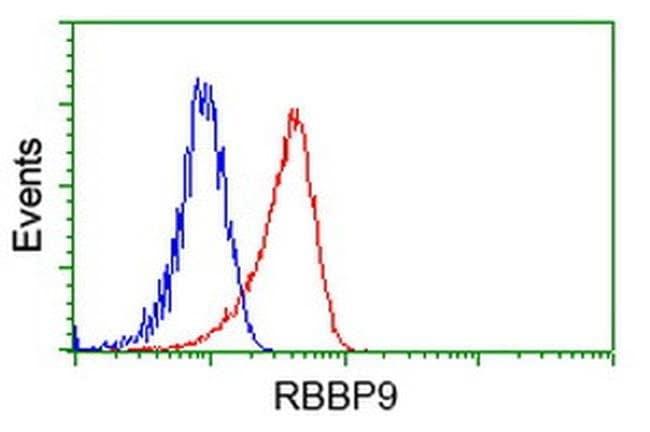 RBBP9 Mouse anti-Human, Clone: OTI4G3, liquid, TrueMAB  100 µL; Unconjugated