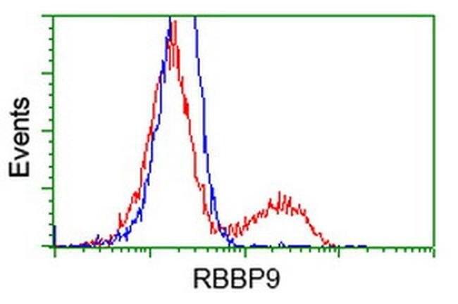 RBBP9 Mouse anti-Human, Clone: OTI4G9, liquid, TrueMAB  100 µL; Unconjugated