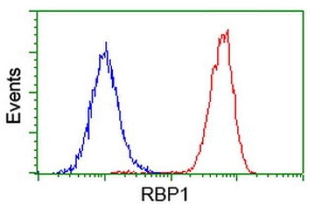 RBP1 Mouse anti-Human, Clone: OTI2H3, liquid, TrueMAB  30 µL; Unconjugated