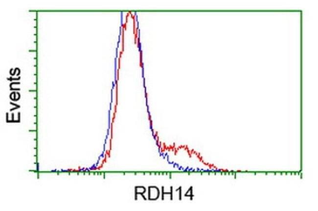 RDH14 Mouse anti-Human, Clone: OTI3E1, liquid, TrueMAB  100 µL; Unconjugated