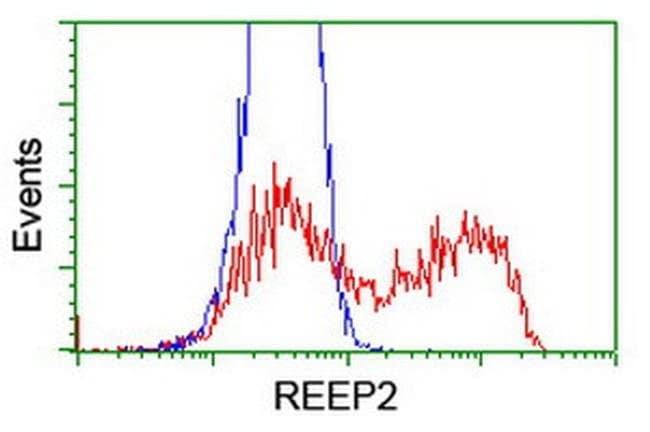 REEP2 Mouse anti-Human, Clone: OTI2C7, liquid, TrueMAB  100 µL; Unconjugated