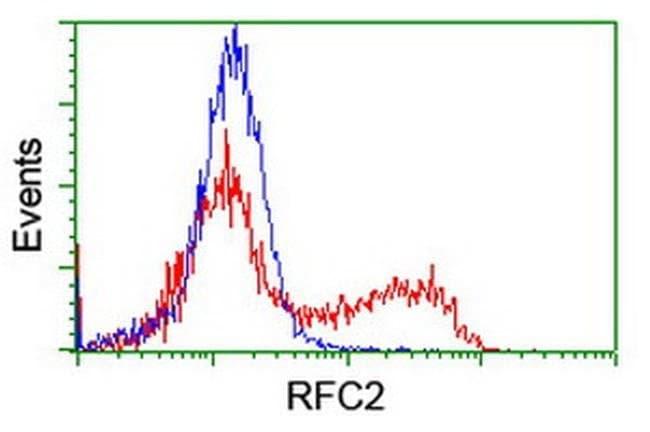 RFC2 Mouse anti-Human, Clone: OTI2B2, liquid, TrueMAB  100 µL; Unconjugated