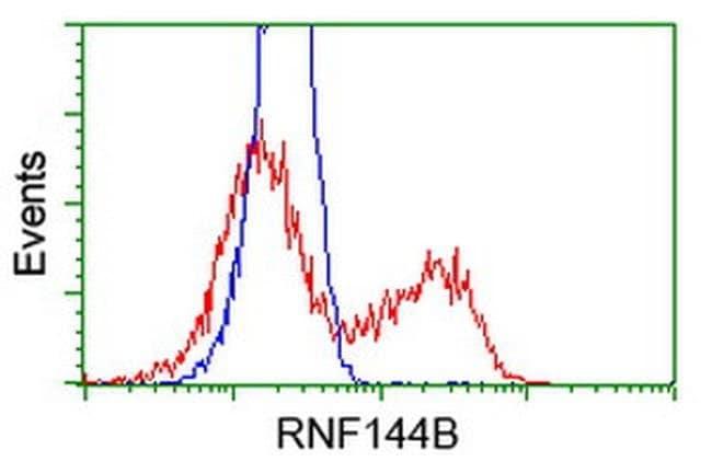 RNF144B Mouse anti-Human, Clone: OTI11F4, liquid, TrueMAB  100 µL;