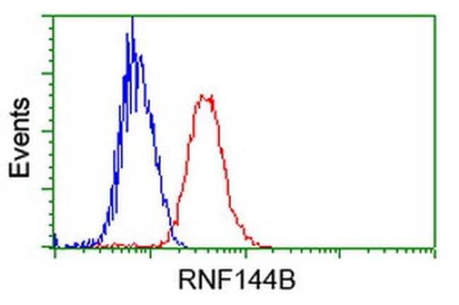 RNF144B Mouse anti-Human, Clone: OTI9H10, liquid, TrueMAB  100 µL;