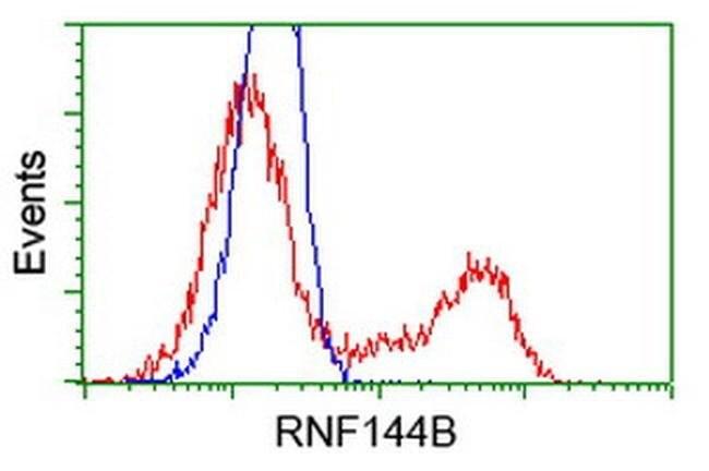 RNF144B Mouse anti-Human, Clone: OTI6B5, liquid, TrueMAB  100 µL;