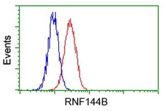 RNF144B Mouse anti-Human, Clone: OTI12B6, liquid, TrueMAB  100 µL;
