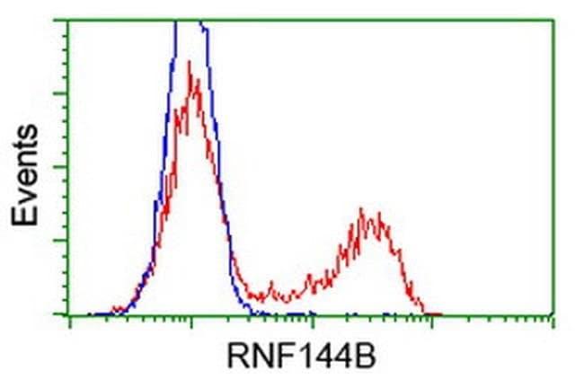 RNF144B Mouse anti-Human, Clone: OTI1E1, liquid, TrueMAB  100 µL;