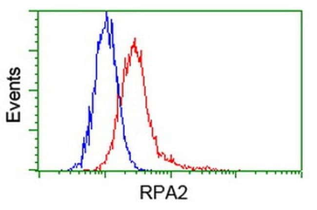 RPA2 Mouse anti-Canine, Human, Clone: OTI7C12, liquid, TrueMAB  100 µL;