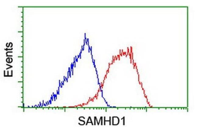 SAMHD1 Mouse anti-Canine, Human, Mouse, Rat, Clone: OTI3F5, liquid, TrueMAB