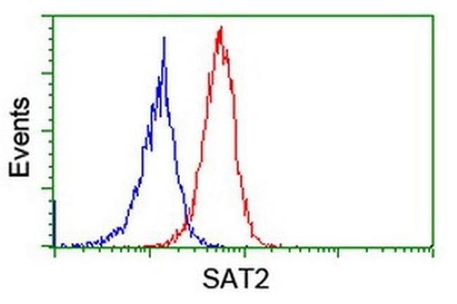 SAT2 Mouse anti-Human, Clone: OTI1C9, liquid, TrueMAB  100 µL; Unconjugated