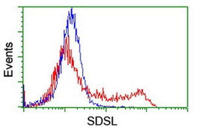 SDSL Mouse anti-Human, Clone: OTI1A8, liquid, TrueMAB  100 µL; Unconjugated