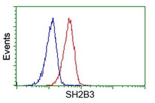 SH2B3 Mouse anti-Human, Clone: OTI2B11, liquid, TrueMAB  100 µL; Unconjugated