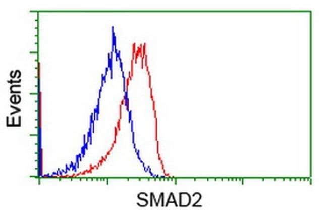 SMAD2 Mouse anti-Human, Clone: OTI2C10, liquid, TrueMAB  100 µL; Unconjugated