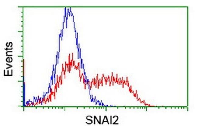 SNAI2 Mouse anti-Human, Clone: OTI2C3, liquid, TrueMAB  100 µL; Unconjugated