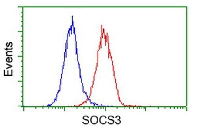 SOCS3 Mouse anti-Human, Clone: OTI6F3, liquid, TrueMAB  100 µL; Unconjugated