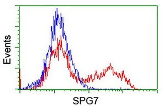 SPG7 Mouse anti-Human, Mouse, Clone: OTI1C12, liquid, TrueMAB  100 µL;