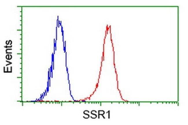SSR1 Mouse anti-Human, Clone: OTI 1B10, liquid, TrueMAB  100 µL; Unconjugated