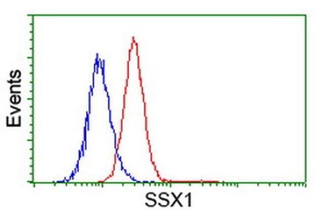 SSX1 Mouse anti-Human, Clone: OTI1B5, liquid, TrueMAB  100 µL; Unconjugated