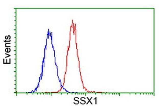 SSX1 Mouse anti-Human, Clone: OTI2D12, liquid, TrueMAB  100 µL; Unconjugated