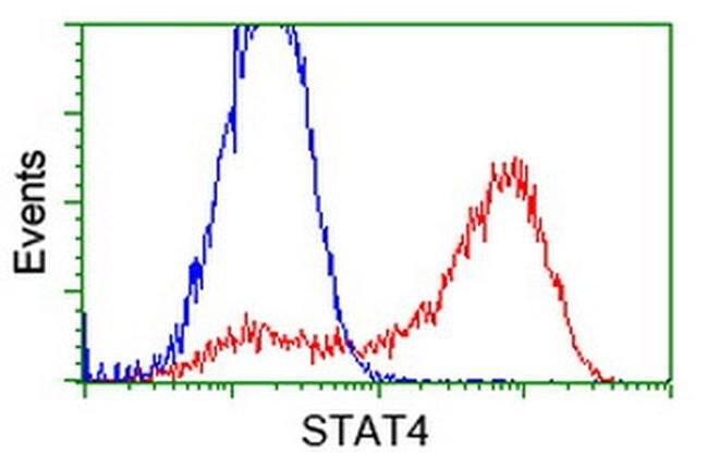 STAT4 Mouse anti-Human, Clone: OTI4H6, liquid, TrueMAB  100 µL; Unconjugated