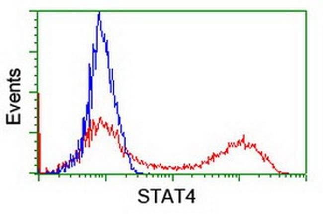 STAT4 Mouse anti-Human, Clone: OTI2F3, liquid, TrueMAB  100 µL; Unconjugated