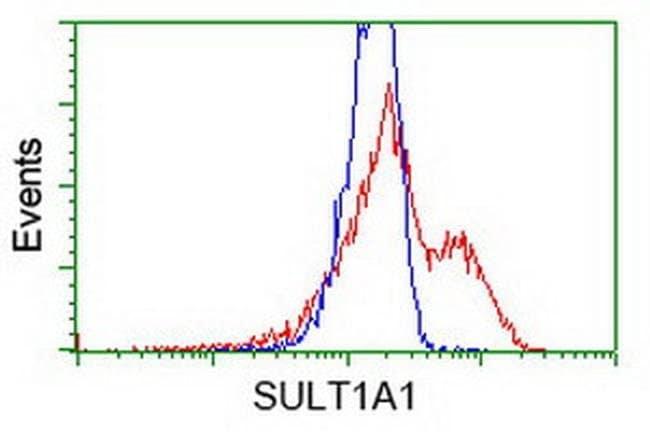 SULT1A1 Mouse anti-Human, Clone: OTI2C5, liquid, TrueMAB  100 µL;