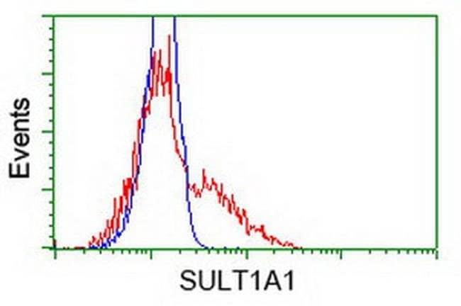 SULT1A1 Mouse anti-Human, Clone: OTI6C8, liquid, TrueMAB  100 µL;