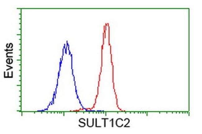 SULT1C2 Mouse anti-Human, Clone: OTI8A1, liquid, TrueMAB  100 µL;