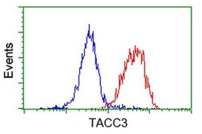 TACC3 Mouse anti-Human, Clone: OTI3B1, liquid, TrueMAB  100 µL; Unconjugated
