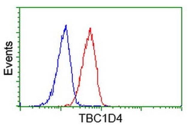 TBC1D4 Mouse anti-Human, Clone: OTI5E6, liquid, TrueMAB  100 µL; Unconjugated