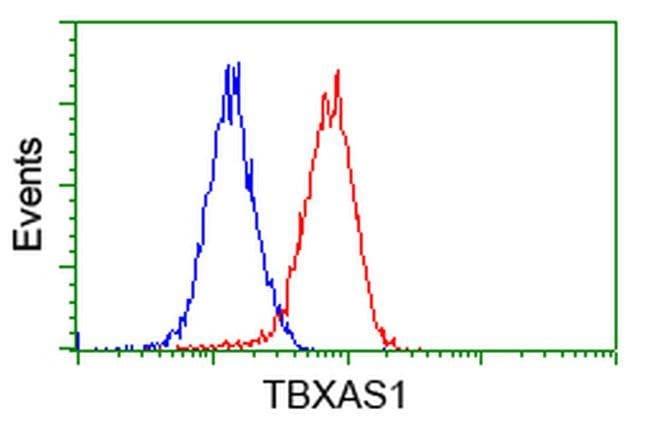 TBXAS Mouse anti-Human, Clone: OTI1H1, liquid, TrueMAB  100 µL; Unconjugated