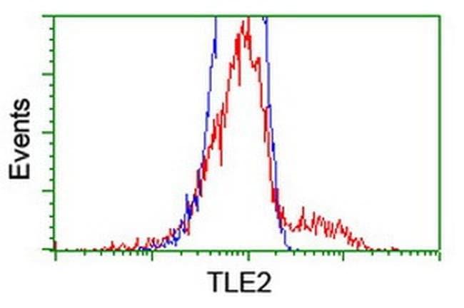 TLE2 Mouse anti-Human, Clone: OTI5A6, liquid, TrueMAB  100 µL; Unconjugated