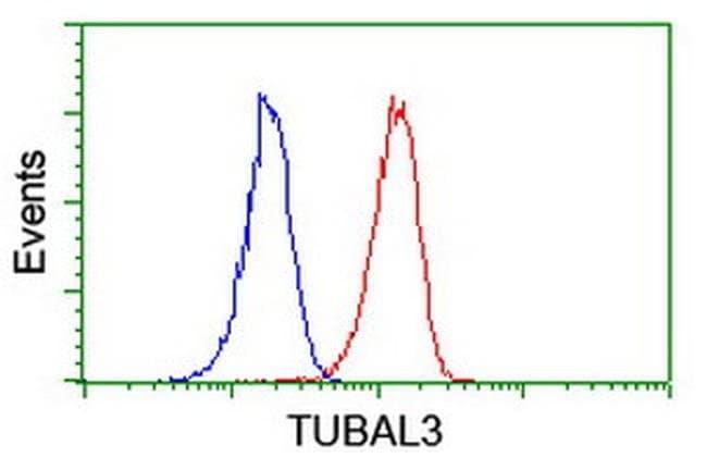 TUBAL3 Mouse anti-Human, Clone: OTI1D7, liquid, TrueMAB  100 µL; Unconjugated