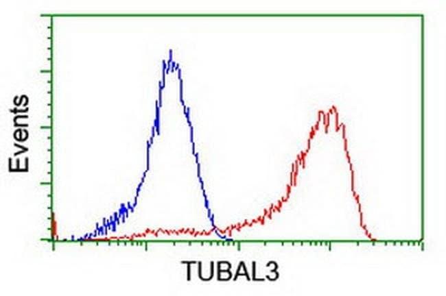 TUBAL3 Mouse anti-Human, Clone: OTI1G6, liquid, TrueMAB  100 µL; Unconjugated
