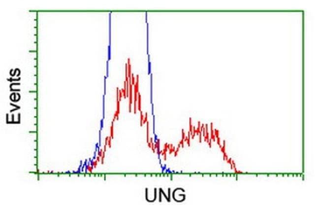 UNG Mouse anti-Human, Clone: OTI1F8, liquid, TrueMAB  100 µL; Unconjugated