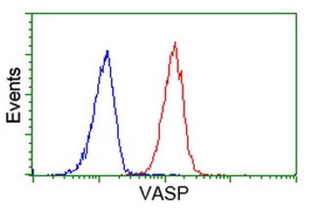 VASP Mouse anti-Human, Rat, Clone: OTI4D6, liquid, TrueMAB  30 µL;