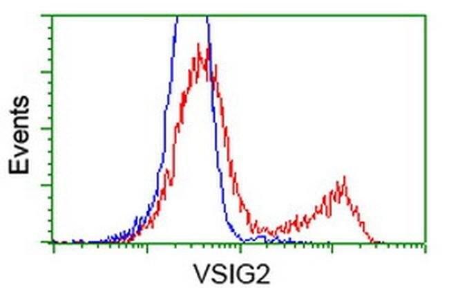 VSIG2 Mouse anti-Human, Clone: OTI2D8, liquid, TrueMAB  100 µL; Unconjugated