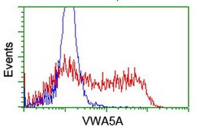 VWA5A Mouse anti-Human, Mouse, Clone: OTI3A3, liquid, TrueMAB  100 µL;