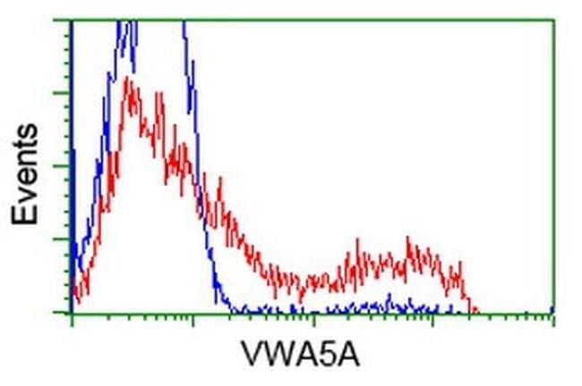 VWA5A Mouse anti-Human, Clone: OTI3E10, liquid, TrueMAB  100 µL; Unconjugated