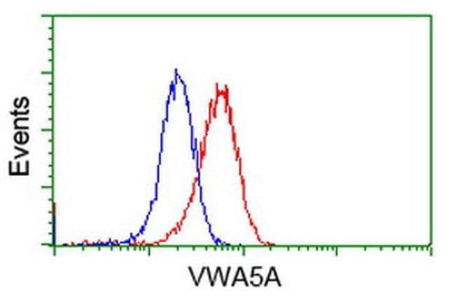 VWA5A Mouse anti-Human, Clone: OTI2B3, liquid, TrueMAB  100 µL; Unconjugated