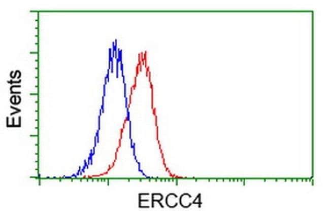 XPF Mouse anti-Human, Clone: OTI2D4, liquid, TrueMAB  100 µL; Unconjugated