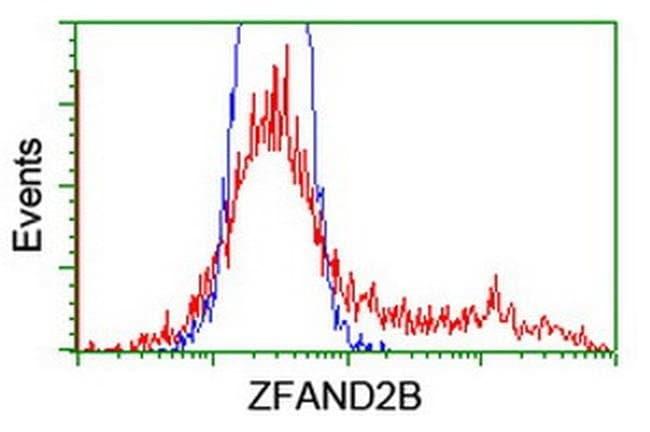 ZFAND2B Mouse anti-Human, Clone: OTI3D6, liquid, TrueMAB  100 µL;