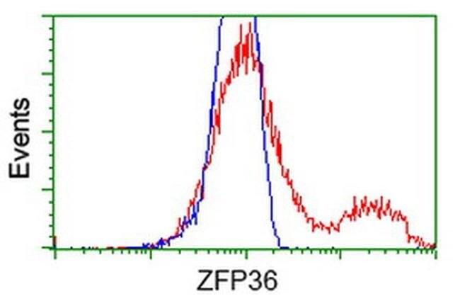 ZFP36 Mouse anti-Human, Clone: OTI1C8, liquid, TrueMAB  100 µL; Unconjugated