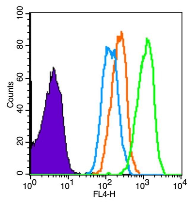 CD2 Rabbit anti-Human, Polyclonal, Bioss  100 µL; Unconjugated
