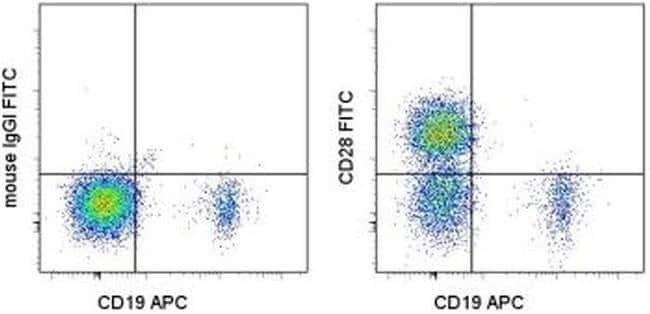 CD28 Mouse anti-Human, FITC, Clone: CD28.2, eBioscience™: Primary Antibodies - Alphabetical Primary Antibodies