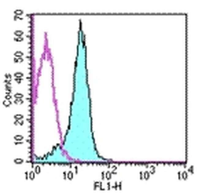 CD31 (PECAM-1) Rat anti-Mouse, FITC, Clone: 390, eBioscience™ 500 μg; FITC CD31 (PECAM-1) Rat anti-Mouse, FITC, Clone: 390, eBioscience™