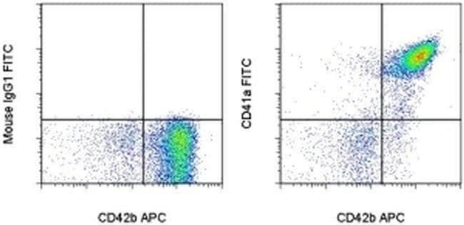 CD41a Mouse anti-Human, FITC, Clone: HIP8, eBioscience ::